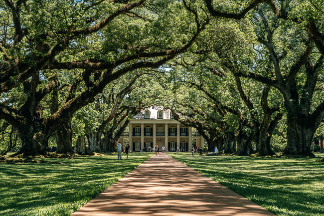 Aok Alley Plantation