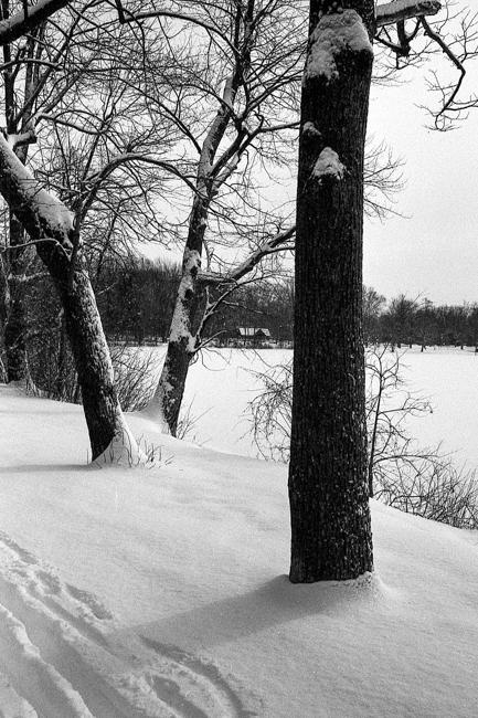 Leica M6 - JCH 400 -018